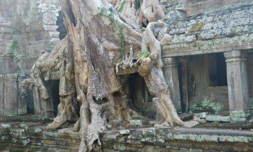 Zdjecie KAMBODżA / brak / Okolice Siem Reap / Świątynie Angkoru 2
