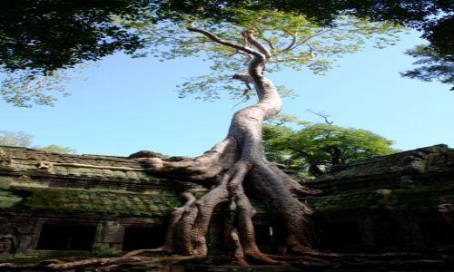 Zdjęcie KAMBODżA / Siam Reap / Angkor Wat / Angkkor...wycieczka w inny wymiar...
