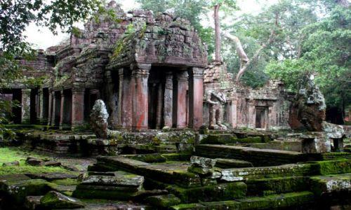 Zdjęcie KAMBODżA / Siam Reap / Angkor Wat / wejscie do mojej Shangri-La