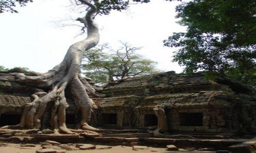 Zdjecie KAMBODżA / brak / Siem Reap / Angkor Wat