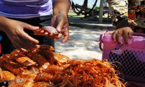 Zdjęcie KAMBODżA / południowy / Sihanoukville / Serwis na Otres Beach
