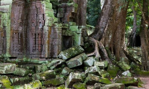 Zdjecie KAMBODżA / Siem Reap Province / Angkor / Ta Prohm