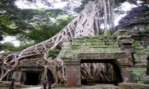 Zdjęcie KAMBODżA / okolice Siem Reap / zespół Angkor Wat / przejście do Ta Keo