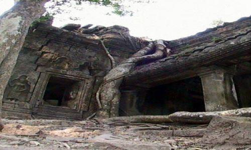 Zdjęcie KAMBODżA / brak / Swiatynie Angkor / TaProhm - drzewo