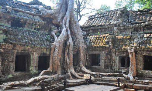Zdjecie KAMBOD�A / Siem Reap / Kambodza / Angkor