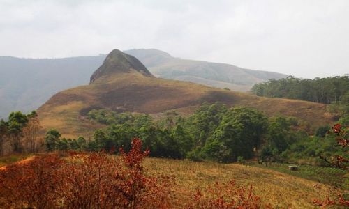 Zdjęcie KAMERUN / Bamenda / Bamenda / Bamenda Highlands