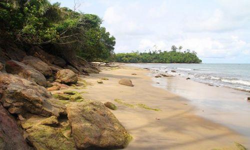 Zdjęcie KAMERUN / Zatoka Gwinejska / Kribi / Dzikie wybrzeże Kribi