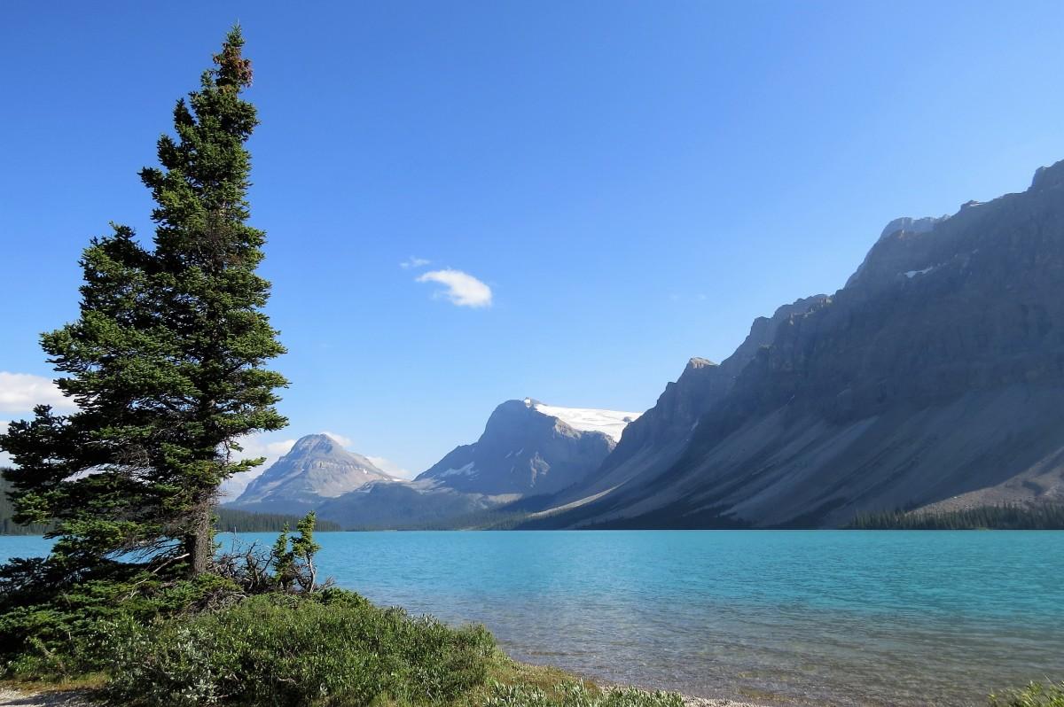 Zdjęcia: Banff NP, Alberta, Lodowce schodzą nisko , KANADA