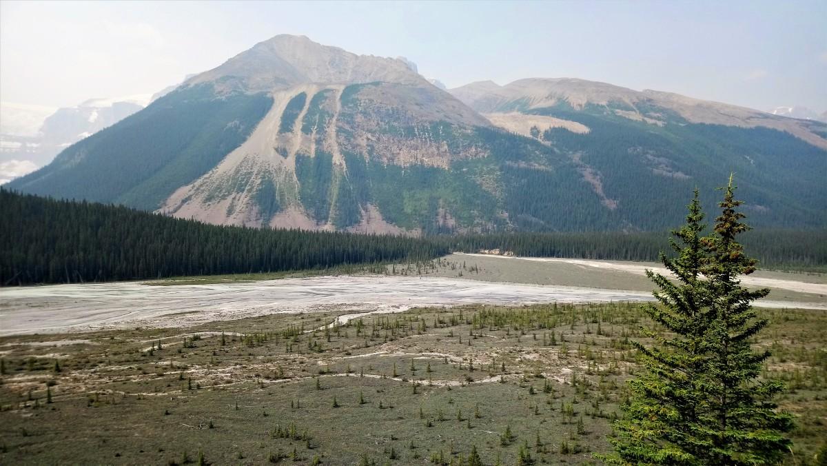 Zdjęcia: Banff NP, Alberta, Dolina w pobliżu lodowca, KANADA