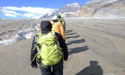 Zdjecie KANADA / Alberta / Columbia Icefields / Cienie