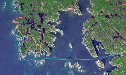 KANADA / Ontario / Wyspa Franklin Island / Na wyspie Franklin Island w Ontario