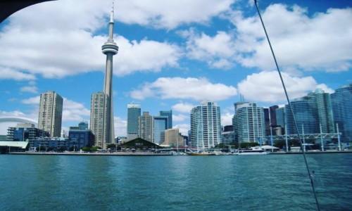 Zdjecie KANADA / Toronto Ontario / Toronto / KANADA