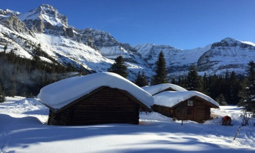 KANADA / British Columbia / Yoho NP / Kanadyjska zima w Yoho