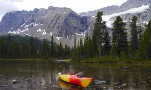 Zdjecie KANADA / Alberta / Bow Lake / W Gorach Skalistych Alberty