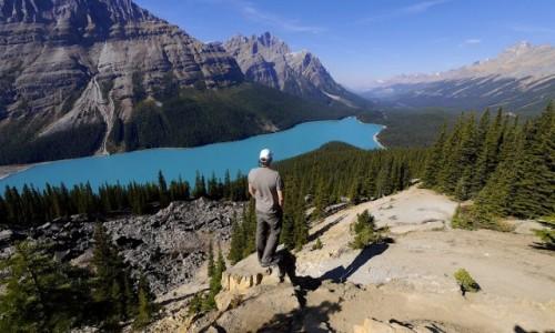 Zdjecie KANADA / Alberta / Banff NP / Peyto Lake