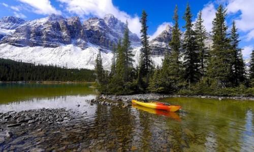 Zdjecie KANADA / Alberta / Bow Lake / Koniec Lata