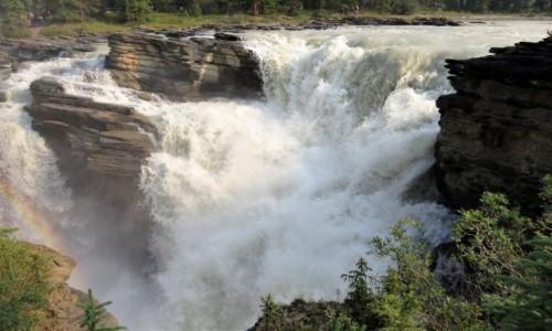 Zdjęcie KANADA / Alberta / Jasper PN / Wodospady Athabasca