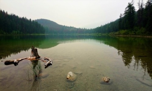 KANADA / Alberta / Jasper PN / Jezioro lesie