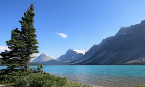 Zdjęcie KANADA / Alberta / Banff NP / Lodowce schodzą nisko