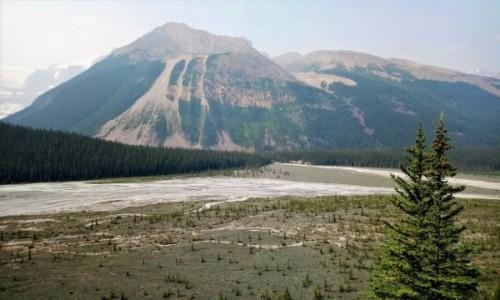 Zdjęcie KANADA / Alberta / Banff NP / Dolina w pobliżu lodowca