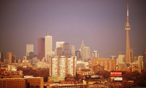 Zdjecie KANADA / Ontario / Toronto / Toronto Skyline