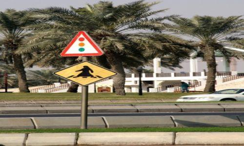 Zdjęcie KATAR / - / Doha / przejście dla pieszych