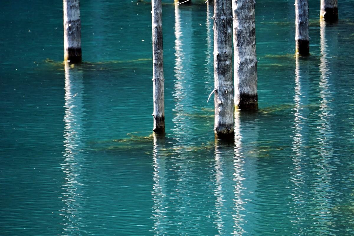 Zdjęcia: Jezioro Kaindy, Tien Szan, Badyle, ale efektowne (-:, KAZACHSTAN