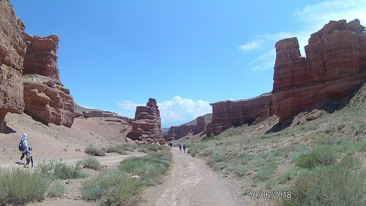 Zdjęcia: Kanion Charyn, Park Narodowy Altyn Emel , Dzika przyroda, KAZACHSTAN