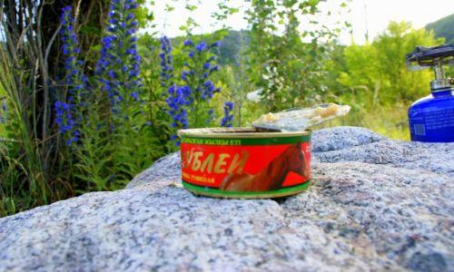 Zdjęcie KAZACHSTAN / Medeo / Medeo / Śniadanie na  trawie
