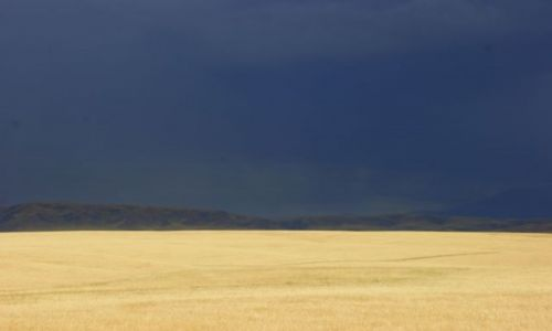 Zdjęcie KAZACHSTAN / Ebro / Ebro / ŁANY
