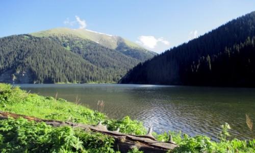 Zdjęcie KAZACHSTAN / Południowy-wschód / Tienszan, jeziora Kolsai / Harmonia