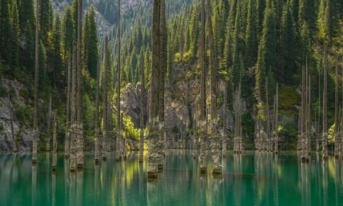 Zdjęcie KAZACHSTAN / płd. Kazachstan, Ałmatynska obłast / J. Kaindy / Jezioro Kaindy