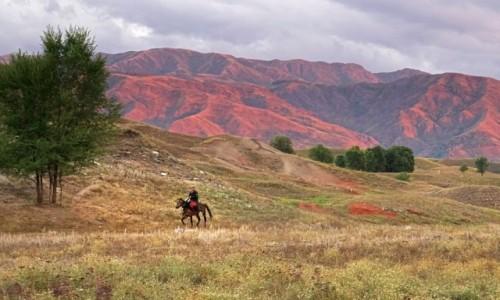 Zdjęcie KAZACHSTAN / obwód żambylski / nad rzeczką.... / Dżygit...