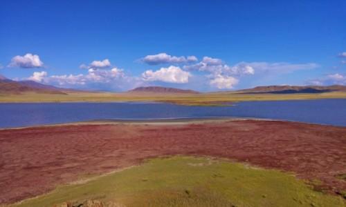 Zdjecie KAZACHSTAN / Południowo-wschodni Kazachstan / Jezioro Tuzkol / Słone jezioro Tuzkol