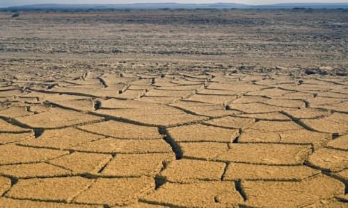 KAZACHSTAN / obwód kyzyłordyński / dawne dno j. Aralskiego / Nie ma..., nie ma..., wody ;)