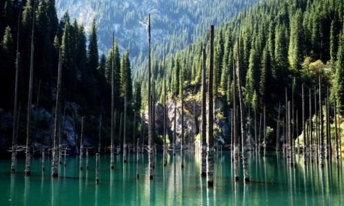 KAZACHSTAN / płd.-wsch. Kazachstan / Park Narodowy Kolsay Lakes / Jezioro Kaindy
