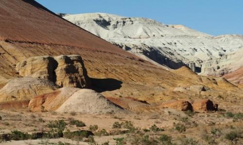 Zdjęcie KAZACHSTAN / płd.-wsch. Kazachstan / Park Narodowy Ałtyn Emel / Góry Białe