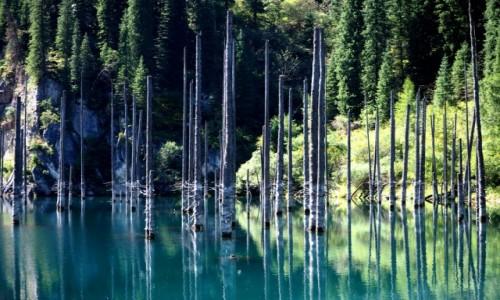 Zdjecie KAZACHSTAN / płd.-wsch. Kazachstan / Park Narodowy Kolsay Lakes / Jezioro Kaindy