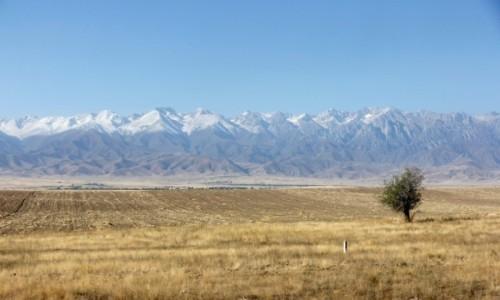 Zdjecie KAZACHSTAN / Obwód żambylski / - / Góry Kirgiskie