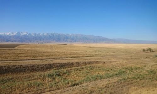 Zdjecie KAZACHSTAN / Obwód żambylski / - / Step i góry na horyzoncie