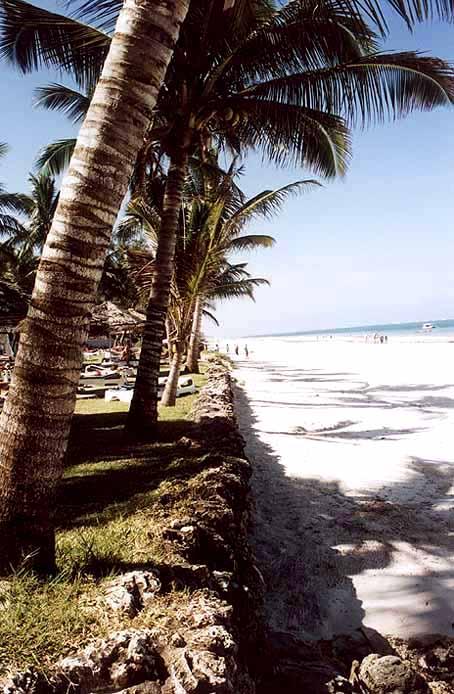 Zdjęcia: Diani Beach, Soud Coast, Kenia, KENIA