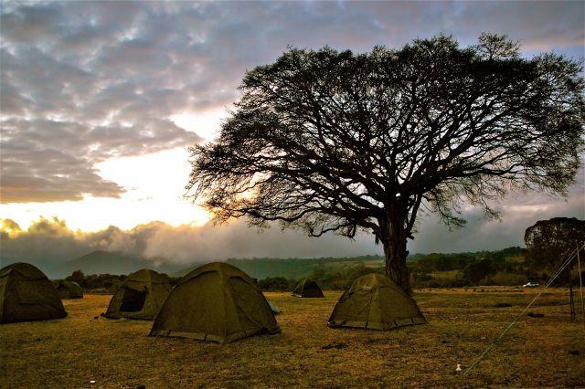Zdjęcia: Park Serengeti, AFRYKA, Wschód, KENIA