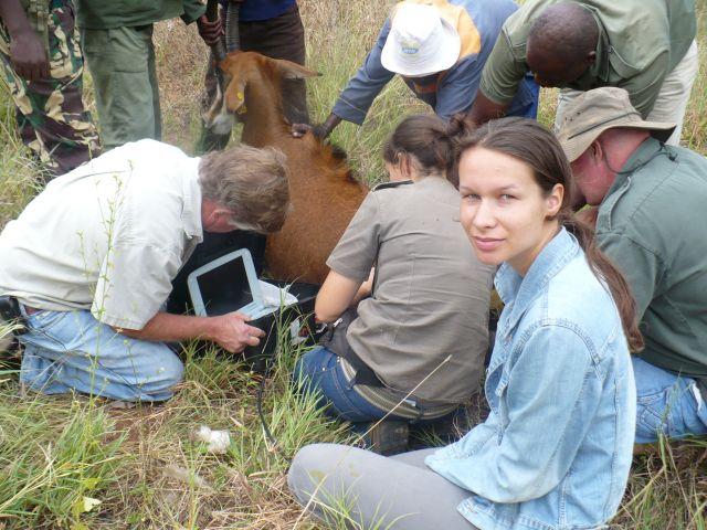 Zdjęcia: --, Kenia, Operacja Dzika Afryka, KENIA