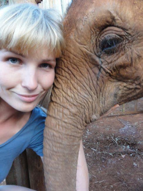 Zdjęcia: Nairobi, w Sierocińcu dla słoni im. Davida Scheldricka w Nairobi, KENIA