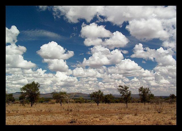 Zdjęcia: południowa Kenia, południowa Kenia, Z głową w obłokach...:o), KENIA