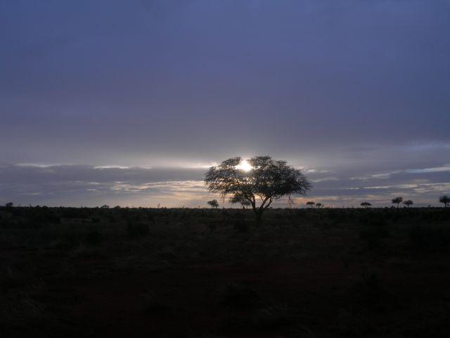 Zdjęcia: Satao Camp, Tsavo East, Poranek, KENIA