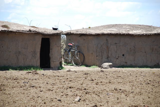Zdj�cia: SAFARI, Masai Mara, Bardzo Ma�e Domki Masaj�w, KENIA