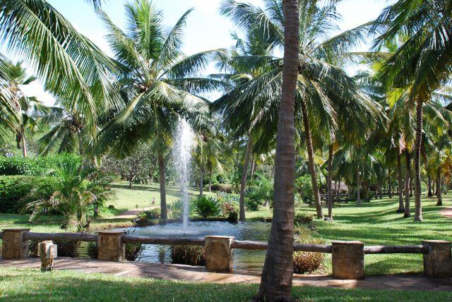 Zdj�cia: Teren przy hotelu Shanzu Palm i Coral Beach, Okolice Mombasy, Krajobraz, KENIA