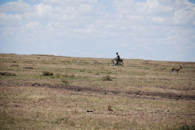 Zdjęcia: SAFARI, Masai Mara, Rower na swannie , KENIA