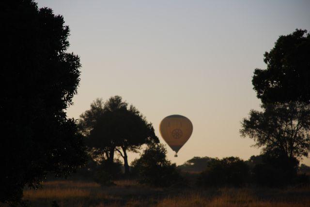 Zdjęcia: SAFARI, Masai Mara, Lot balonem o wschodzie słońca, KENIA